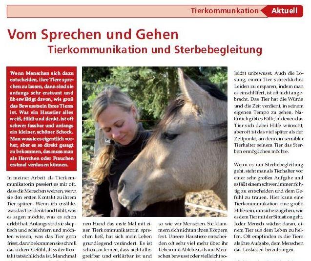 tierkommunikation medien haustieranzeiger 16
