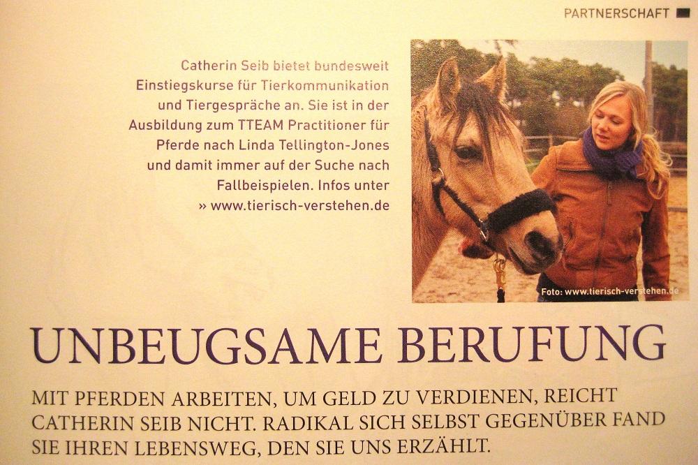 tierkommunikation medien pferde erleben 8